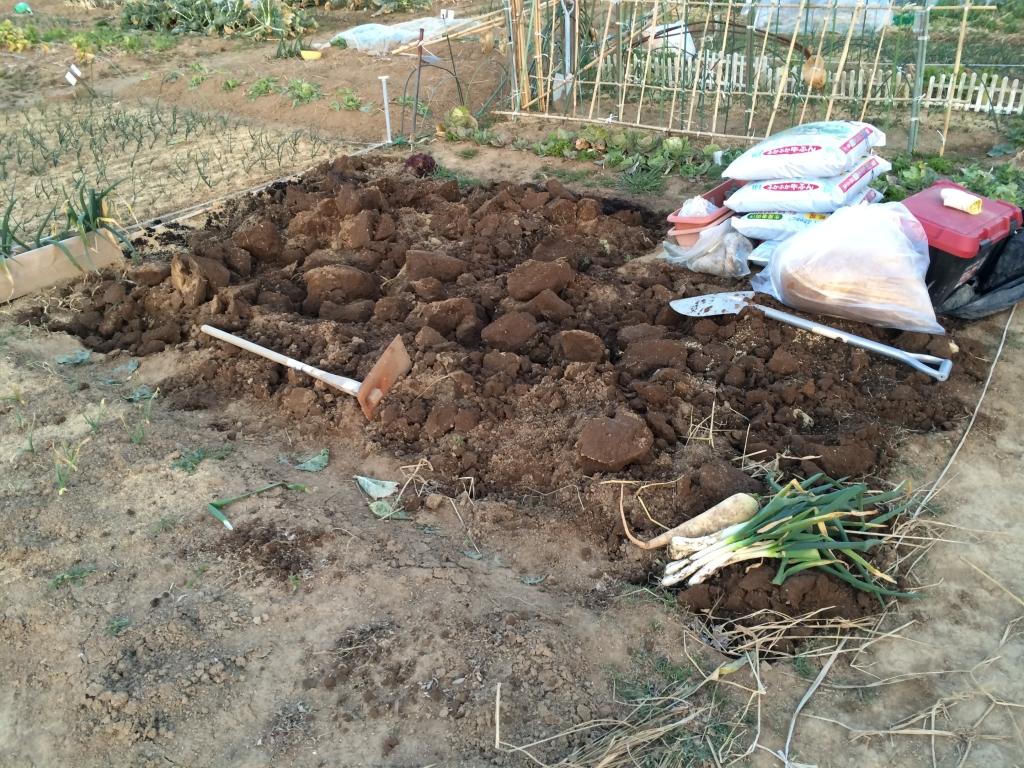 春野菜に向けて土作り